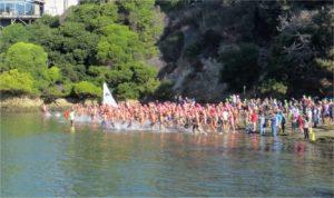 Keller Cove Swim for Kids Sake @ Keller Beach | Richmond | California | United States